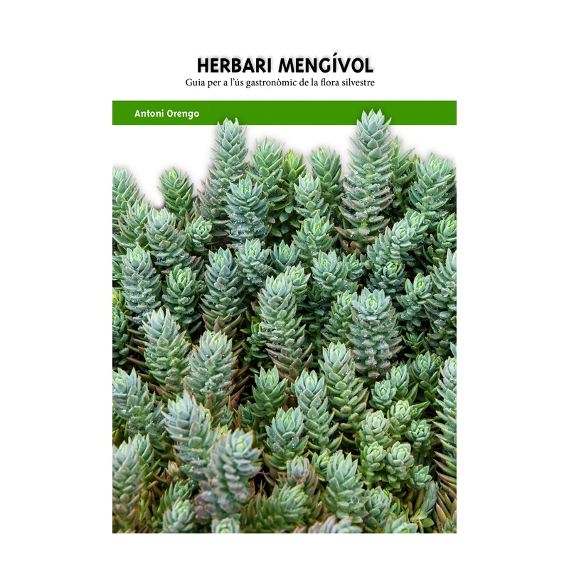 Antoni Orengo i els seus llibres herbaris (dijous 1 de setembre, 20h, a la plaça Major de Benifairó de la Valldigna)