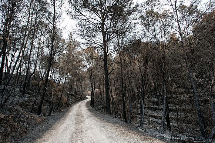 'Enllà del foc', a Gavina Llibres, el 7 de març