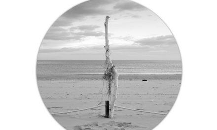 Pep Aparisi, Rafa Gomar i Conxa Peiró exposen a Gandia obres sobre la platja de l'Auir